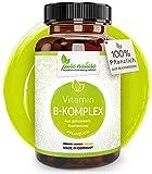 100% PFLANZLICH: Vitamin B Komplex rein aus Bio Buchweizen | Alle B-Vitamine | Deutscher Premium Rohstoff | Vegan | Laborgeprüft | Ohne Zusatzstoffe | 90 Kapseln