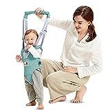 Lauflernhilfe Gehhilfe für Baby Stehen Gehen Lernen Helfer Walker für Kinder 8-24 Monthe (Grün)