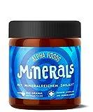 Minerals - Über 80 Mineralien und Spurenelemente - Mit Ur-Essenz Shilajit - 450g neutrales Pulver
