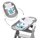 Hauck  Neugeborenen Aufsatz / Alpha Bouncer 2in1 / von Geburt an nutzbar / mit sitzeinlage / kompatibel mit Alpha+ und Beta+, Hearts Grey (Grau)