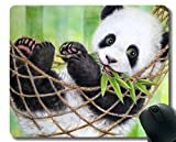 Yanteng Mauspad mit genähter Kante, Pandas Baby Tier Hängematte Riesenpanda Kunst, Mausmatte, rutschfeste Gummibasis Mousepad für Laptop, Computer