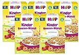 Hipp Kinder Beeren-Müsli, ab dem 12. Monat, 5er (5 x 200g)