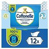 Cottonelle Feuchtes Toilettenpapier, Sauber Pflegend - Mizellenwasser & Baumwollduft, Biologisch Abbaubar, Plastikfrei, Wiederverschließbar, Vorteilspack, 12 x 42 Feuchttücher