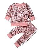 Douleway Kinder Baby Mädchen Jungen Winterkleidung Samt Langarmshirts Pullover Sweatshirt + Hosen Lässige Outfits Kleidung (Rosa, 6-12Monat)