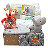 Kelzia Geschenkbox für Neugeborene - Willkommensgeschenk mit Baumwollkleidung, biologisch abbaubaren Windeln, Plüschtier, Bilderrahmen und mehr - vegan, antiallergische Baumwolle - Unisex (Box 1)