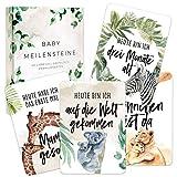 40 Baby Meilensteinkarten erstes Lebensjahr als Erinnerungskarten + Geschenkbox I Die schönsten Meilensteine der ersten 12 Monate ideal als Geschenk für werdende Mütter und Väter I Geburt Babyparty
