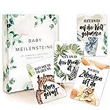 40 Baby Meilensteinkarten erstes Lebensjahr als Erinnerungskarten + Geschenkbox I Die wichtigsten...