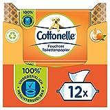 Cottonelle Feuchtes Toilettenpapier, Mein Spa Erlebnis - Kaschmir und Orangenöl, Biologisch Abbaubar, Plastikfrei, Wiederverschließbar, Vorteilspack, 12 x 42 Feuchttücher