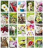 Edition Seidel Set 20 Geburtstagskarten Glückwunschkarten zum Geburtstag mit Umschlag. Grusskarte...