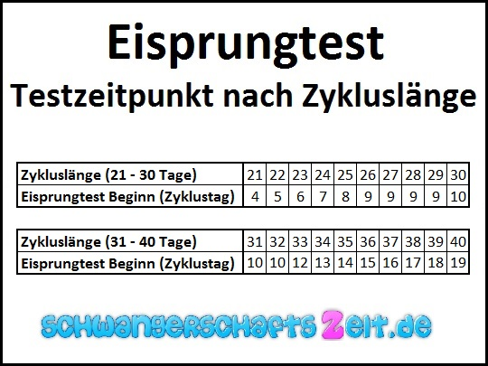 Eisprungtest - Ovulationstest