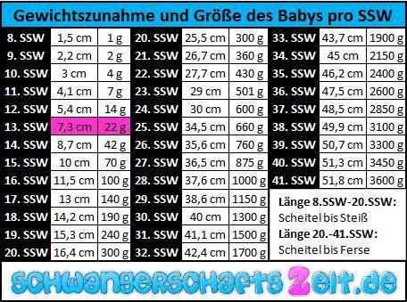 Tabelle: 13. SSW Gewichtszunahme, Größe