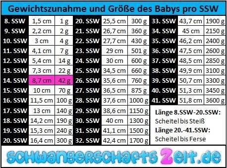 Tabelle: 14. SSW - Gewichtszunahme - Größe