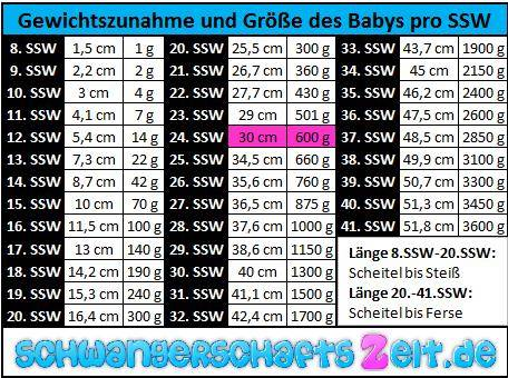 24 ssw das baby im bauch entwicklung gr e gewicht. Black Bedroom Furniture Sets. Home Design Ideas