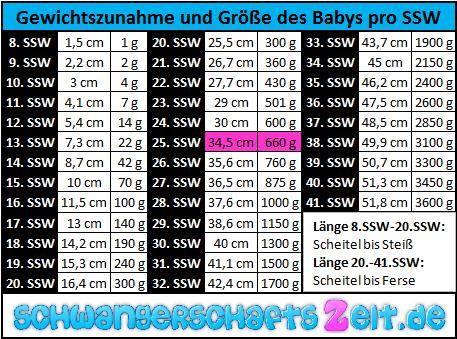 24 ssw gewichtszunahme mutter tabelle