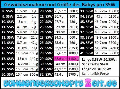 TabelleSSW 29 Gewichtszunahme Größe