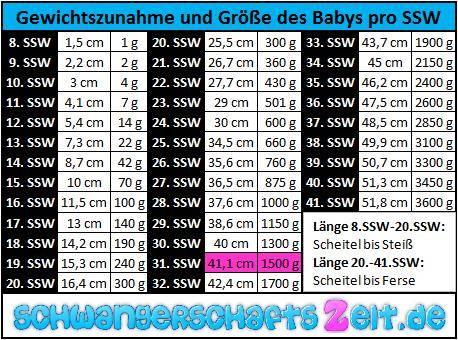 Tabelle - 31. SSW - Gewichtszunahme - Größe