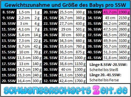 Tabelle SSW 33 Gewichtszunahme Größe