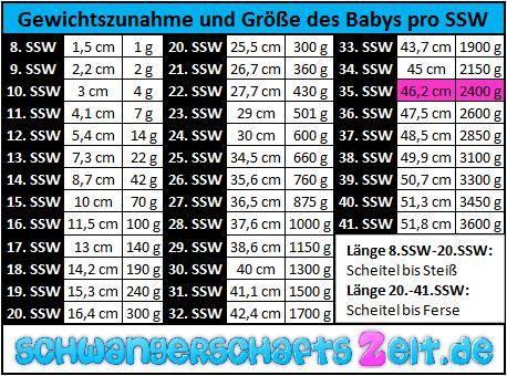 Tabelle 35. SSW Gewichtszunahme & Größe