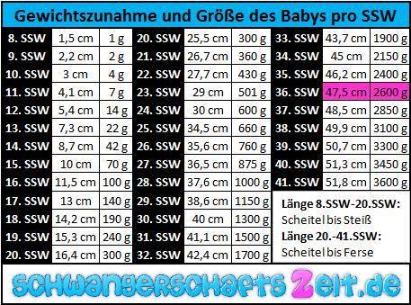 Tabelle 36. SSW Gewichtszunahme & Größe