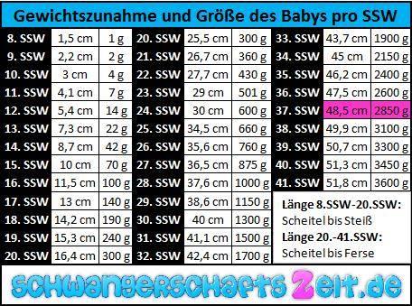 Tabelle 37. SSW Gewichtszunahme & Größe