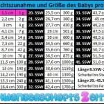 Tabell: 8.SSW Gewichtszunahme Größe