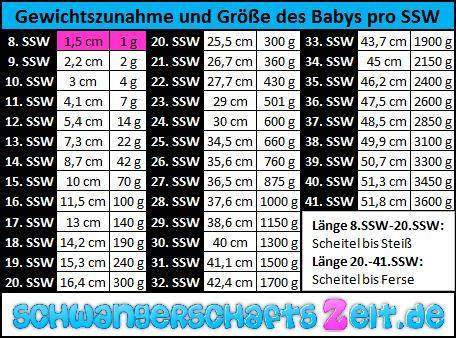 Tabell: 8. SSW Gewichtszunahme Größe