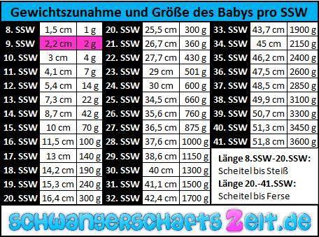 Tabelle 9. SSW Gewichtszunahme Größe