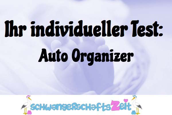 Auto Organizer