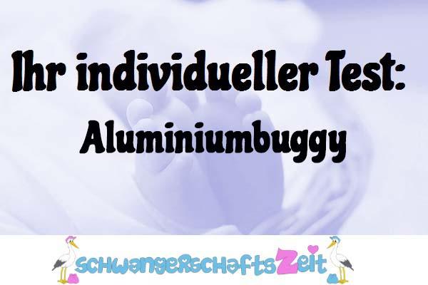 Aluminiumbuggy