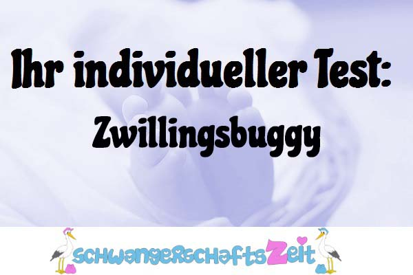 Zwillingsbuggy